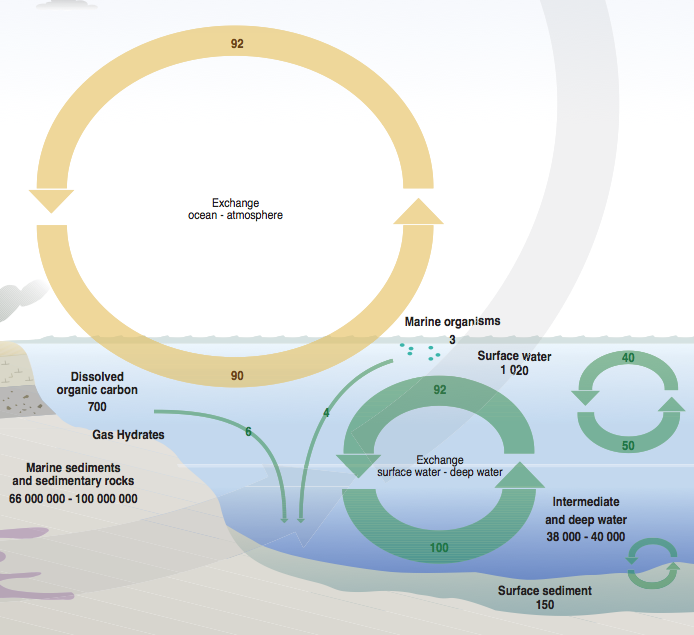 The carbon cycle a geologists view energy matters ccuart Images